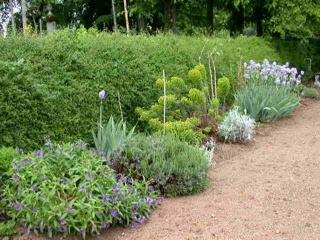Le jardin chateau de longsard au nord de lyon for Jardin anglais mixed border