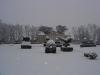 Topiaire sous la neige
